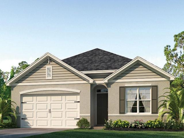 3127 Bethpage Loop, Mount Dora, FL 32757 (MLS #O5741406) :: Team Touchstone
