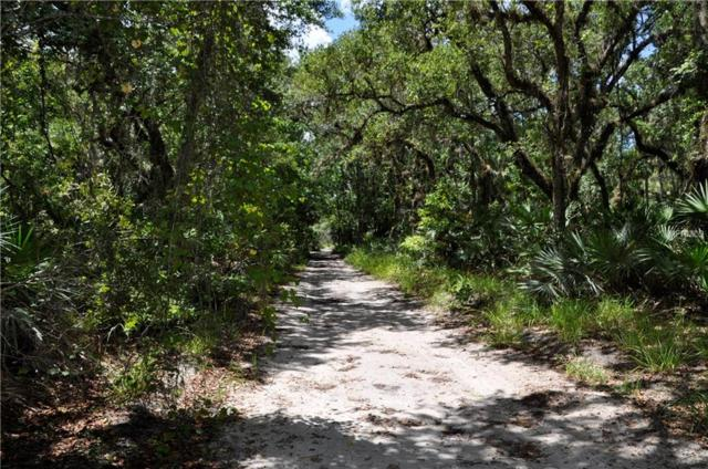 Lake Harney Road, Osteen, FL 32764 (MLS #O5741565) :: Mark and Joni Coulter | Better Homes and Gardens