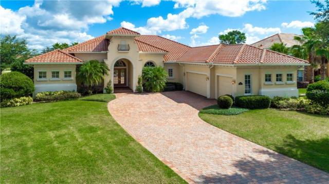 3009 Palermo Court, Mount Dora, FL 32757 (MLS #O5741789) :: Your Florida House Team