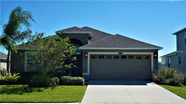4804 Havilland Drive, Mount Dora, FL 32757 (MLS #O5741883) :: Griffin Group