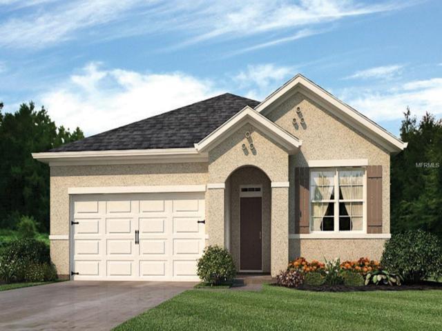 1849 Rain Lily Place, Saint Cloud, FL 34771 (MLS #O5742064) :: CENTURY 21 OneBlue