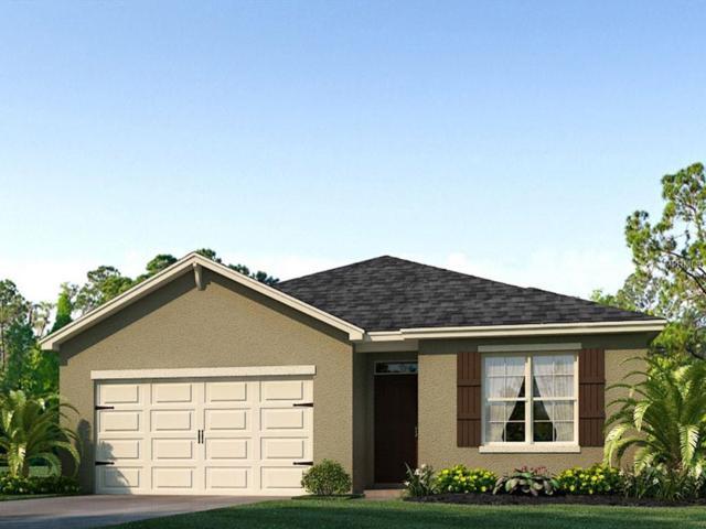 1845 Rain Lily Place, Saint Cloud, FL 34771 (MLS #O5742074) :: CENTURY 21 OneBlue