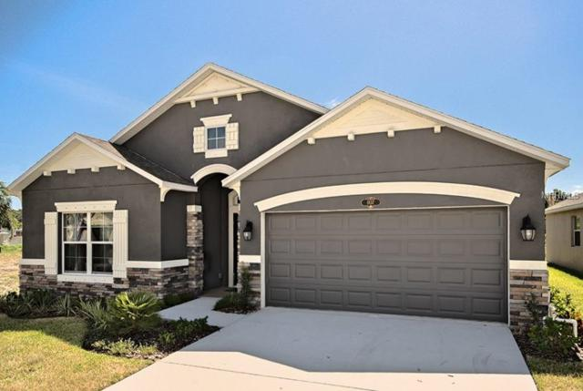 32031 Stone Meadow Ct, Sorrento, FL 32776 (MLS #O5742139) :: Griffin Group