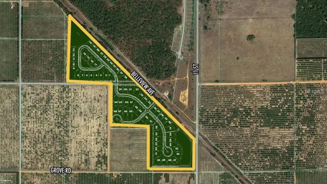 Bellview Drive, Lake Wales, FL 33853 (MLS #O5742211) :: The Duncan Duo Team