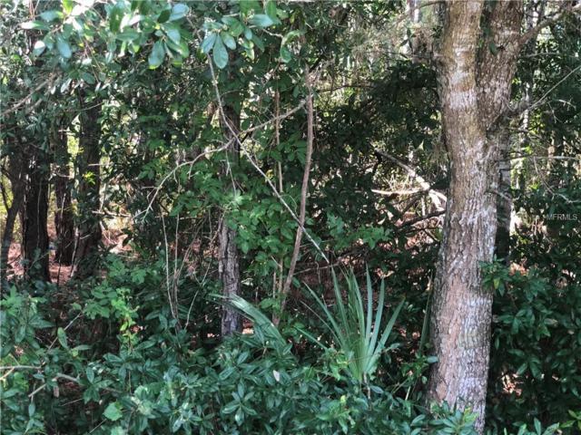 874 Yacolt Road SE, Palm Bay, FL 32909 (MLS #O5743176) :: Griffin Group