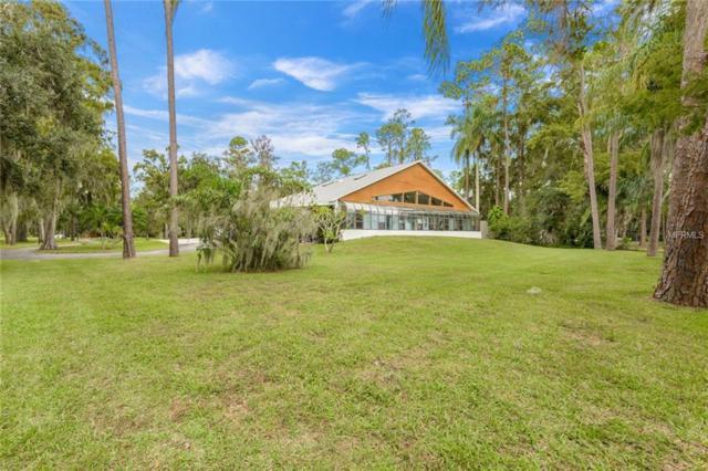 13714 Lake Mary Jane Road, Orlando, FL 32832 (MLS #O5743251) :: The Light Team