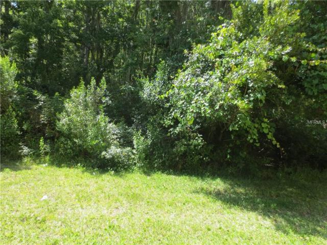 19 Snapdragons Court, Homosassa, FL 34446 (MLS #O5744447) :: The Duncan Duo Team