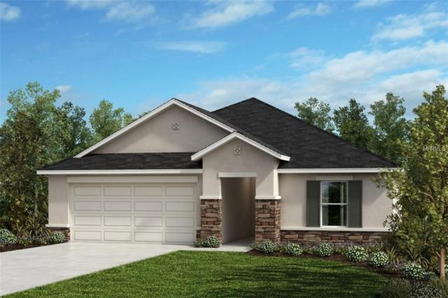 Address Not Published, West Melbourne, FL 32904 (MLS #O5744851) :: The Duncan Duo Team