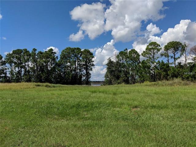 6711 Point Hancock Drive, Winter Garden, FL 34787 (MLS #O5745154) :: Bustamante Real Estate