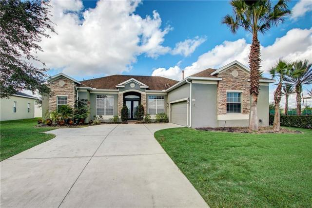 4420 Harts Cove Way, Clermont, FL 34711 (MLS #O5745254) :: Mark and Joni Coulter | Better Homes and Gardens