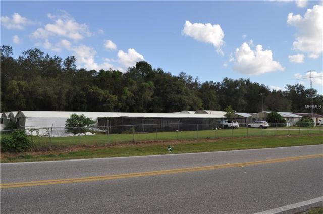 3587 Clarcona Road, Apopka, FL 32703 (MLS #O5745414) :: Delgado Home Team at Keller Williams