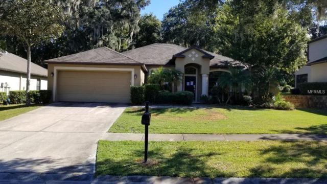 8812 Alafia Cove Drive, Riverview, FL 33569 (MLS #O5745486) :: Lovitch Realty Group, LLC