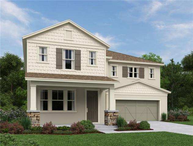 14867 Renaissance Avenue, Odessa, FL 33556 (MLS #O5745755) :: Griffin Group