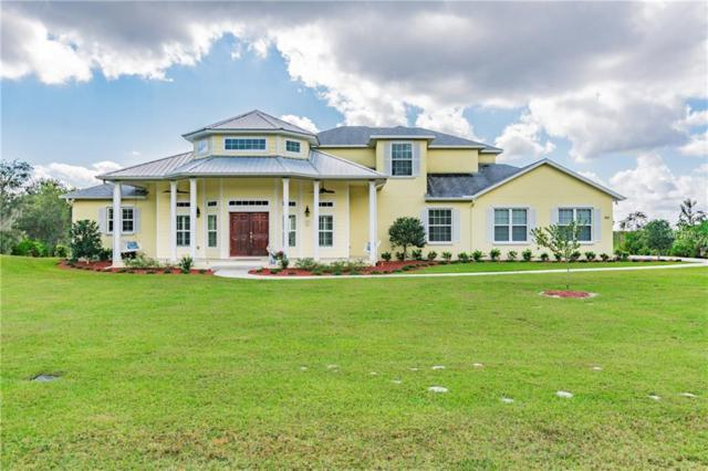 391 Walrock Street, Debary, FL 32713 (MLS #O5745781) :: Mark and Joni Coulter   Better Homes and Gardens