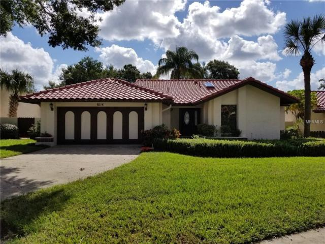 8114 S Ibiza Court, Orlando, FL 32836 (MLS #O5745807) :: Mark and Joni Coulter | Better Homes and Gardens