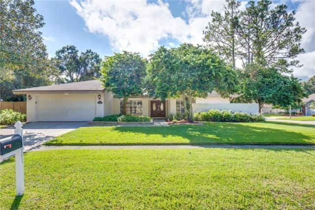 14801 Clarendon Drive, Tampa, FL 33624 (MLS #O5746100) :: The Duncan Duo Team