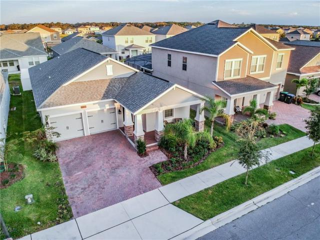 9831 Loblolly Woods Drive, Orlando, FL 32832 (MLS #O5746161) :: Mark and Joni Coulter | Better Homes and Gardens
