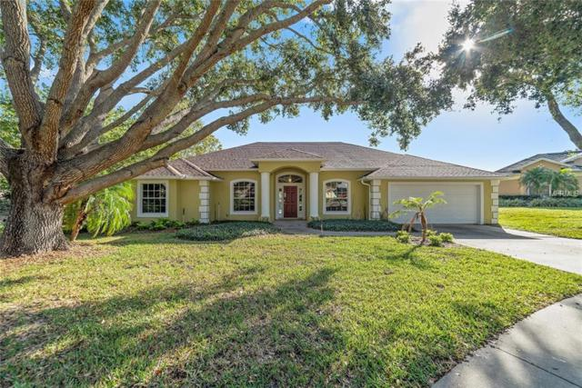 9516 White Sand Court, Clermont, FL 34711 (MLS #O5746417) :: Mark and Joni Coulter | Better Homes and Gardens