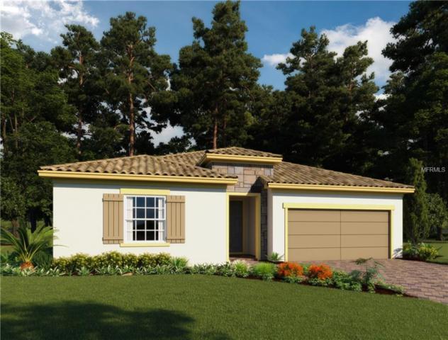 4825 Tobermory Way, Bradenton, FL 34211 (MLS #O5746515) :: Revolution Real Estate
