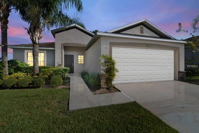 5803 Coquyt Drive, Mount Dora, FL 32757 (MLS #O5746725) :: KELLER WILLIAMS CLASSIC VI