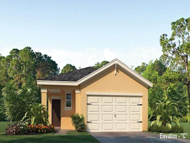 3214 Surfbird Street, Kissimmee, FL 34744 (MLS #O5747025) :: Mark and Joni Coulter | Better Homes and Gardens