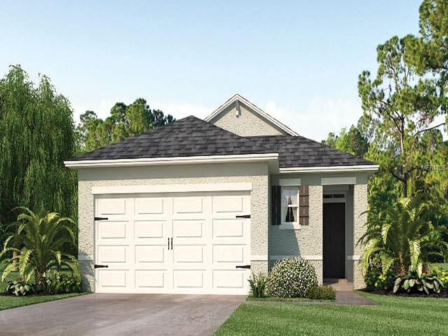 3205 Surfbird Street, Kissimmee, FL 34744 (MLS #O5747058) :: Mark and Joni Coulter | Better Homes and Gardens