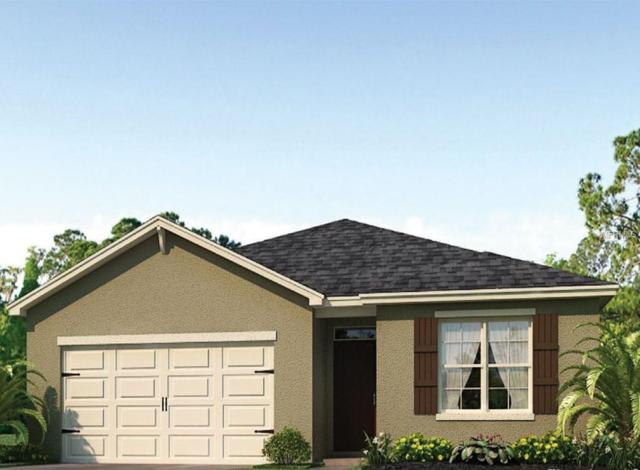 1825 Partin Terrace Road, Kissimmee, FL 34744 (MLS #O5747086) :: Mark and Joni Coulter | Better Homes and Gardens