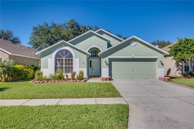 12541 Blazing Star Drive, Tampa, FL 33626 (MLS #O5747167) :: SANDROC Group