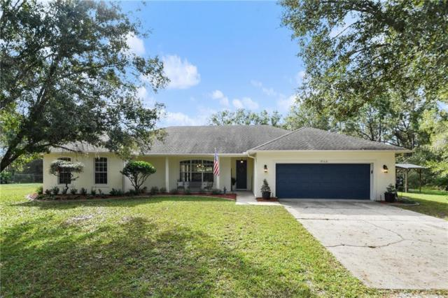 19106 Sheldon Street, Orlando, FL 32833 (MLS #O5747175) :: Cartwright Realty