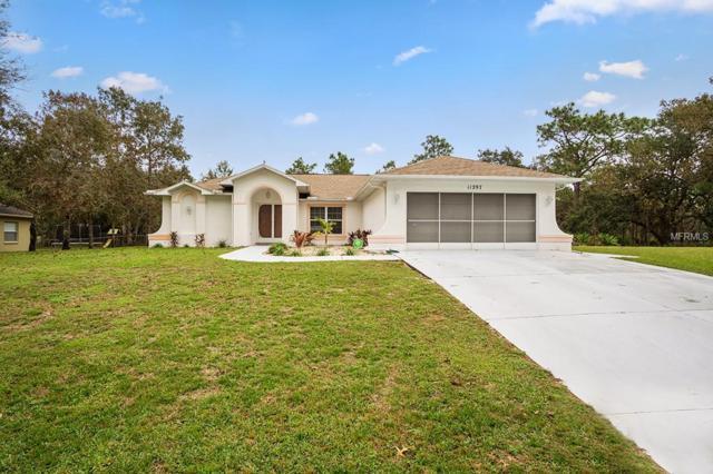 11297 Frigate Bird Avenue, Weeki Wachee, FL 34613 (MLS #O5747248) :: Delgado Home Team at Keller Williams