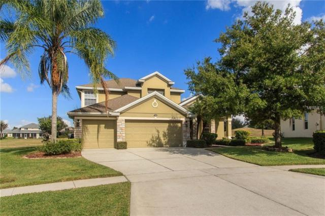 1406 Lakemist Lane, Clermont, FL 34711 (MLS #O5747373) :: Bustamante Real Estate