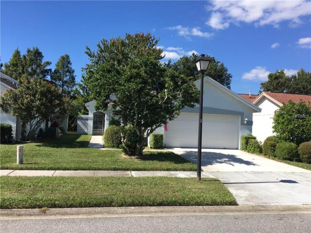 5891 Parkview Point Drive, Orlando, FL 32821 (MLS #O5747488) :: The Dan Grieb Home to Sell Team