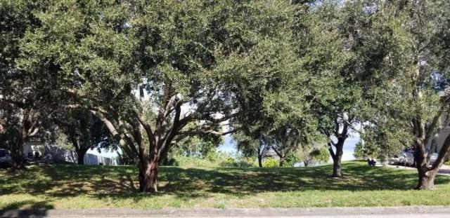 26 Oakland Pointe Circle, Oakland, FL 34760 (MLS #O5747758) :: Jeff Borham & Associates at Keller Williams Realty