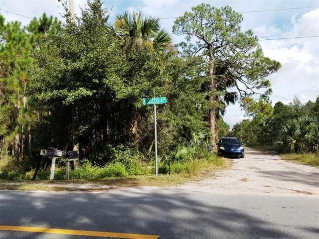 Osceola Road, Geneva, FL 32732 (MLS #O5747778) :: Jeff Borham & Associates at Keller Williams Realty