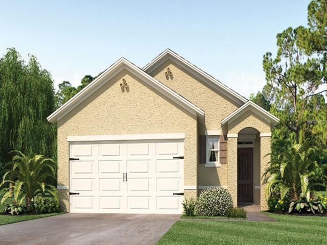 3220 Surfbird Street, Kissimmee, FL 34744 (MLS #O5747951) :: Team Bohannon Keller Williams, Tampa Properties