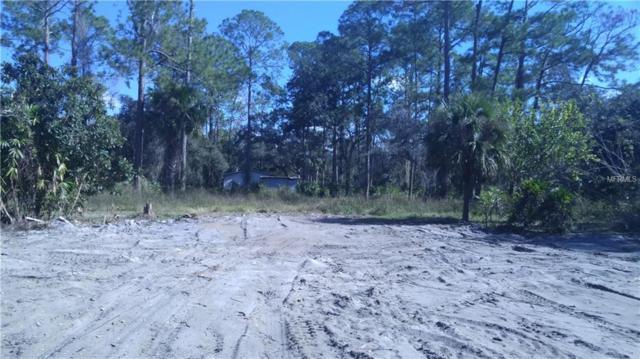 9721 James Creek Road, Christmas, FL 32709 (MLS #O5749007) :: Homepride Realty Services