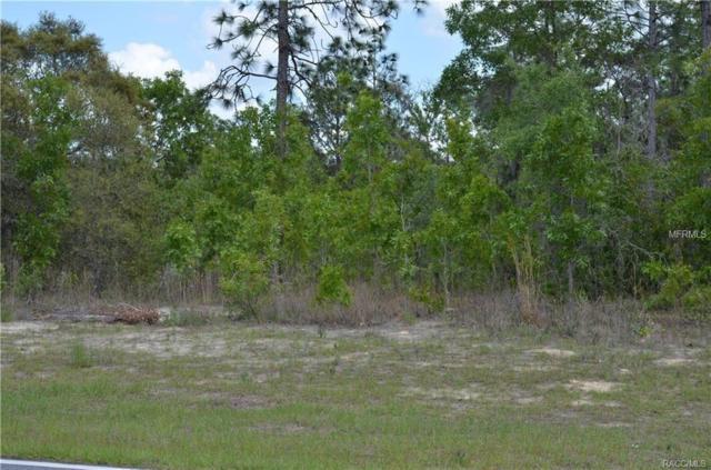 11349 N Zeus Point, Citrus Springs, FL 34433 (MLS #O5749241) :: Homepride Realty Services