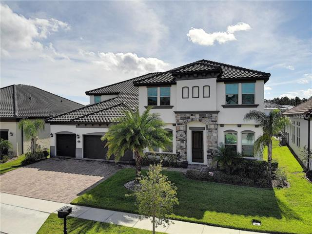 8161 Chilton Drive, Orlando, FL 32836 (MLS #O5749363) :: The Duncan Duo Team