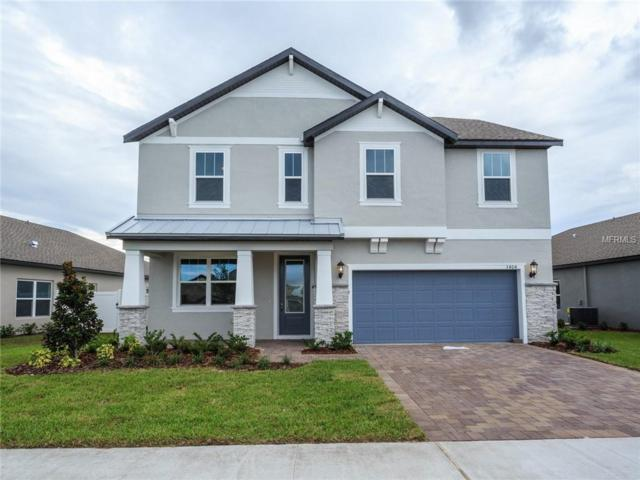 3404 Middlebrook Place, Harmony, FL 34773 (MLS #O5749439) :: Godwin Realty Group