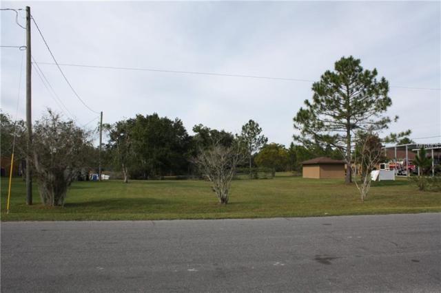 Babbitt, Orlando, FL 32833 (MLS #O5749614) :: Mark and Joni Coulter | Better Homes and Gardens