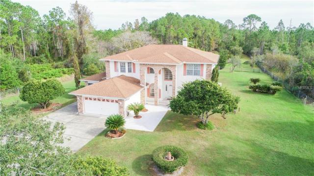 1805 Eldorado Court, Saint Cloud, FL 34771 (MLS #O5749755) :: Griffin Group