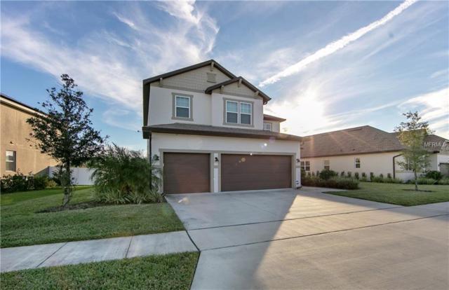 3147 Dark Sky Drive, Harmony, FL 34773 (MLS #O5749951) :: Homepride Realty Services
