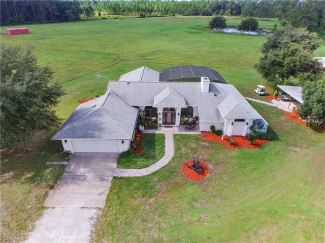 23800 County Road 42, Paisley, FL 32767 (MLS #O5750287) :: Mark and Joni Coulter | Better Homes and Gardens