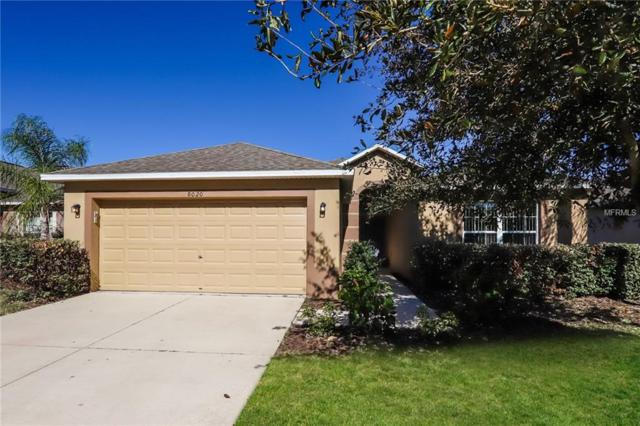8020 Alamosa Wood Avenue, Ruskin, FL 33573 (MLS #O5750369) :: Premium Properties Real Estate Services