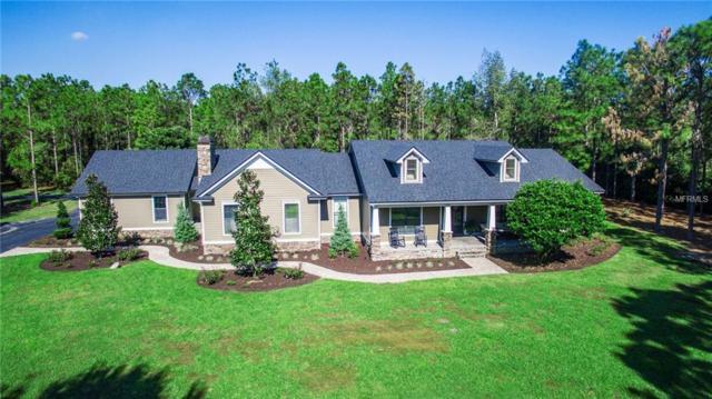 10131 Fox Meadow Trail, Winter Garden, FL 34787 (MLS #O5750507) :: CENTURY 21 OneBlue