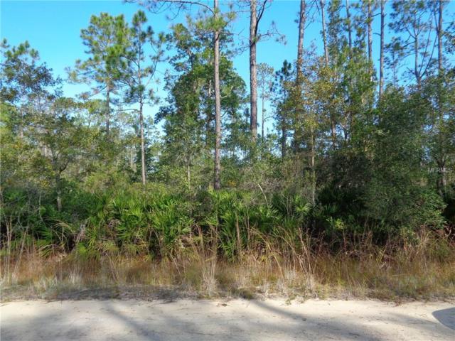 204 Roberts Street, Interlachen, FL 32148 (MLS #O5750612) :: Homepride Realty Services