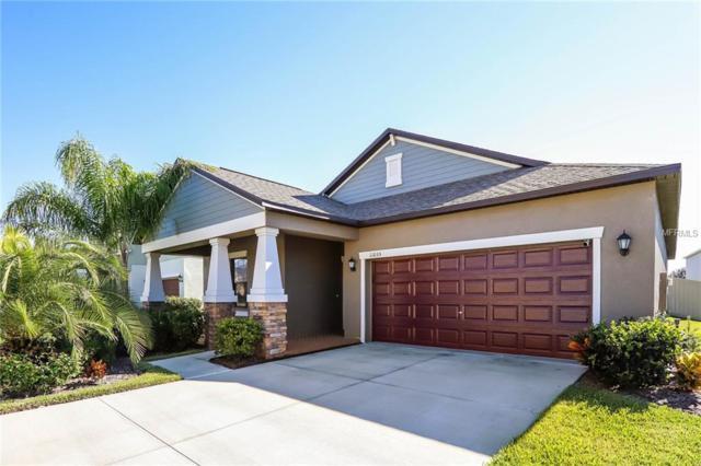11035 Little Blue Heron Drive, Riverview, FL 33579 (MLS #O5750740) :: Revolution Real Estate