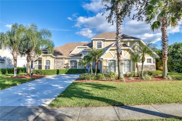 1705 Elsie Park Court, Kissimmee, FL 34744 (MLS #O5751118) :: RE/MAX Realtec Group