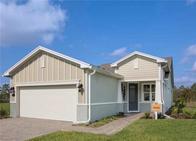 1091 Licolnshire Drive, Deland, FL 32724 (MLS #O5751237) :: Team Pepka