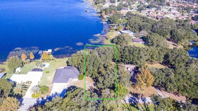 10721 Denali Drive, Clermont, FL 34711 (MLS #O5751346) :: White Sands Realty Group